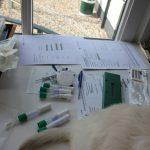 Het is een hele administratie: swabs, microchips, stamboompapieren, stickertjes....