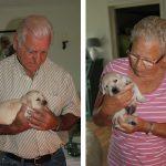 Als mijn ouders op bezoek zijn, knuffelen ze ook altijd wel even met de hondjes