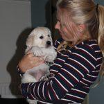 Altijd bereid om mij te helpen met de verzorging van de pups: Ruby!!!