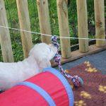 Een flos aan een touwtje