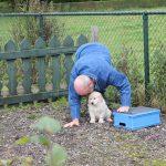 Gé in een dominante houding en maakt een 'boe'-geluid. Het scheelde de pups echt niks!