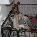 Ze heeft de pups twee weken niet gezien dus ze moest ze echt even vertroetelen: Ruby!