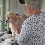 Gelukkig is 'oma' er om te helpen afdrogen :-)