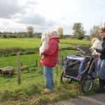 Socialisatie: weer een nieuw avontuur, ditmaal naar de schaapjes