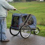 Mijn vader (nog in zijn werkkleding van het klussen bij ons thuis) rijdt de pups richting het weiland